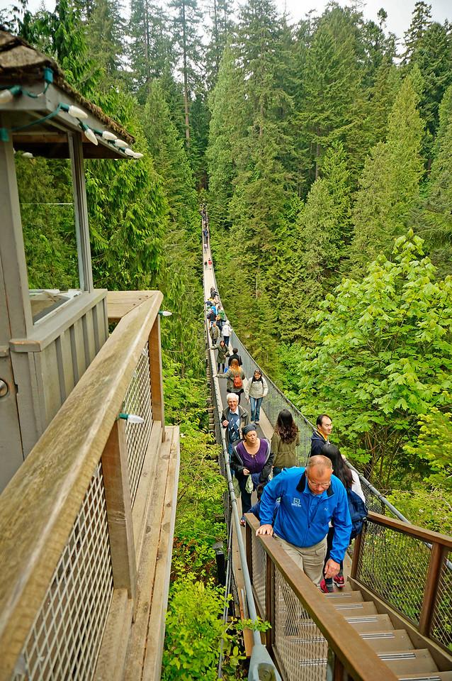 Capilano suspension bridge in Vancouver.