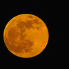 Moon over Anderson.<br /> <br /> Photographer's Name: Brian  Fox<br /> Photographer's City and State: Anderson, Ind.