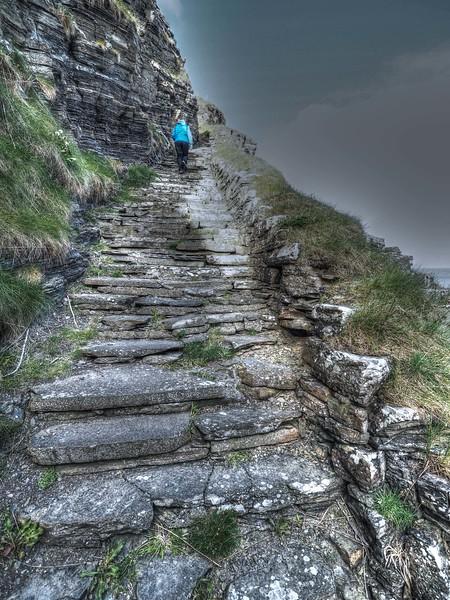 Whaligoe Steps - 15th May 2016