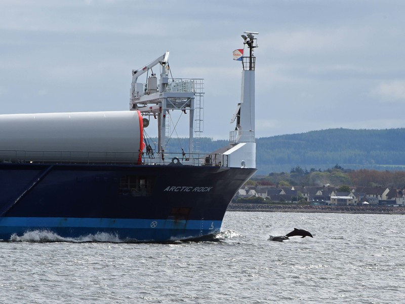 Dolphins leaping at the bow of a vessel bringing yet more wind turbines to Scotland on 15 May 2016