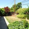 fairglen back yard
