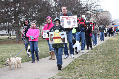 17Mar2013__ CJ Appling, age 12, (in grey hooded coat) leads the Pooch Patrol March for Maya down Cleveland Street in Amherst on St. Patrick's Day, Sunday. To the left, in pink coat with small dog is Kiley Waterbury, age 10. Behind CJ are Alyssa Danicki, age 11, and Mr. Bob Danicki. The Danicki's dog, Maya, was stabbed to death last week. photo by Ray Riedel