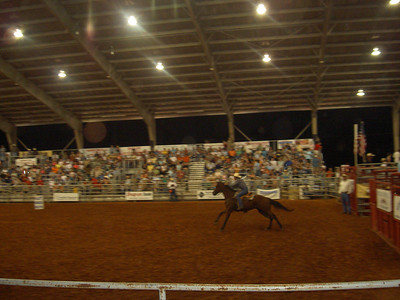 McDonough Rodeo 2008