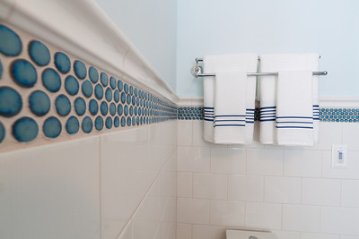 McElhaney_Bathroom_Remodel-0005