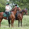 Barbara E. and her standardbred Big Red at the Standardbred Pleasure Trail Pace.