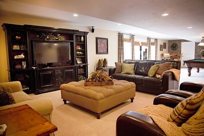 house 1, basement (1 of 1)-2