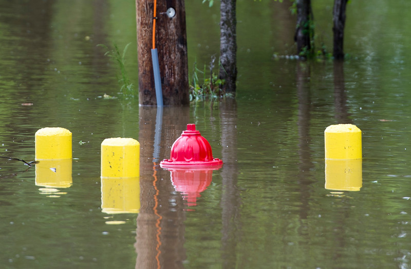 Justin Sheely | The Sheridan Press<br /> Part of a fire hydrant stands out of the water on Leopard Street in Sheridan Tuesday, May 29, 2018. More than two inches of rain fell over Memorial Day weekend causing area flooding near creeks throughout Sheridan County.