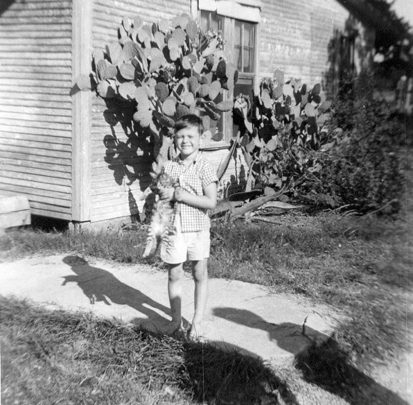 DOUG THE NATURALIST<br /> Here I am standing on the front walk of Nano and Grandpa's, holding one of the kittens their resident kitty factory, Bo Diddley, was kind enough to produce for us. That old calico must've lived to be 100, but she still kept pumping them out. The only brood she had that was ever a problem was the one where us kids weren't around to drag them out and play with them every day, so they grew up wild. I probably still have some of the scars on my hands from the first attempts to extricate them from under the back porch. They were all claws, let me tell you.