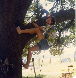 MONKEY BOY This is just one of the many ways I used to use to climb up into the tree. Let me tell you, my advancing years are making themselves know right about now.