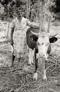 Joe's wife with her cow (at her request)
