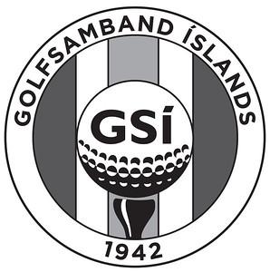 GSI_logo_GRAY