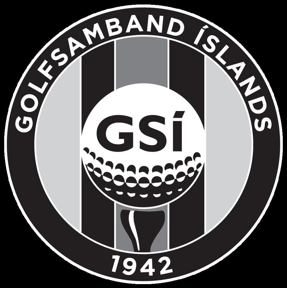 GSI_logo_NEGATIVE