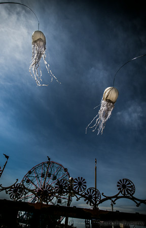 Mermaid Parade June 2014