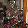 Christmas, 2009 CIMG0821