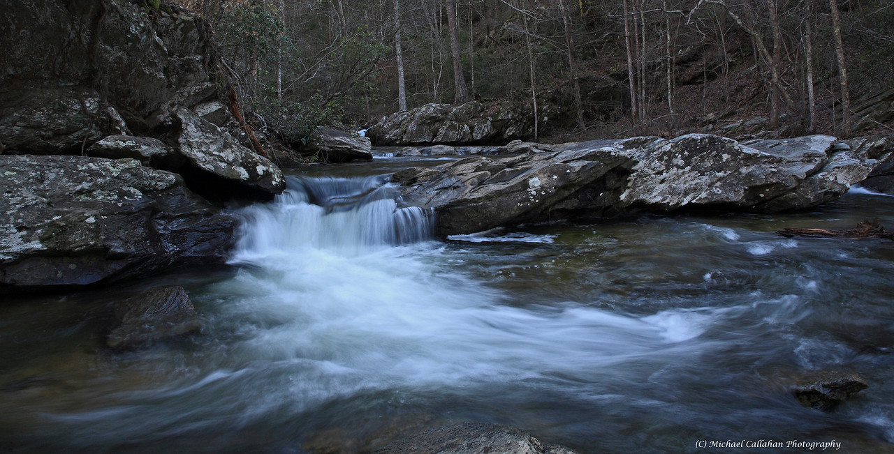 A Winter Flow  Devoid of Autumn leaves the streams of Talladega National Forest have a stark beauty even in the dead of Winter.
