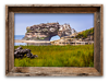 Natural Bridges, Santa Cruz<br /> 11 x 17   $80.00