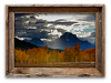 Sunbeam Aspens, Grand Tetons<br /> 13 x 19 Canvass   $95.00
