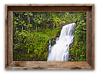 Waterfall in Hilo, Hawaii<br /> 12 x 18   $90.00