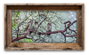 Great Horned Owlets<br /> 10 x 20   $75.00
