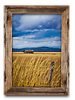 Barn in the Field, North Idaho<br /> 13 x 19 Canvass   $95.00