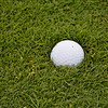 This was a soft course - ball embedded in the fairway - it did not bounce.
