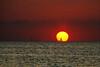 Lochinvar Joanni 0073 Chicago Sunset