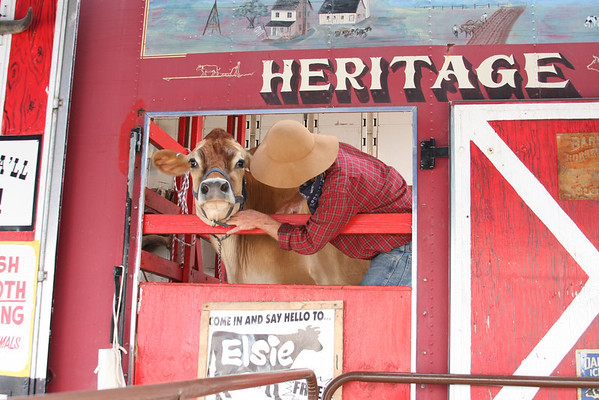 Cow Town USA