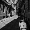 Milano May 2011 -  241