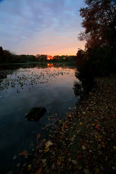 Mill Pond Bellmore_2624
