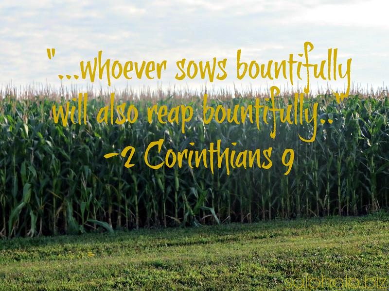 """2 Corinthians 9:6<br /> <a href=""""https://www.openbible.info/topics/reaping_what_you_sow"""">https://www.openbible.info/topics/reaping_what_you_sow</a><br /> The point is this: whoever sows sparingly will also reap sparingly, and whoever sows bountifully will also reap bountifully.<br /> <br /> <a href=""""https://www.openbible.info/topics/offering"""">https://www.openbible.info/topics/offering</a><br /> <br /> Acts 20<br /> <br /> <a href=""""https://salphotobiz.smugmug.com/Weather/Day-Time-Sky/i-SLSbPRV"""">https://salphotobiz.smugmug.com/Weather/Day-Time-Sky/i-SLSbPRV</a>"""