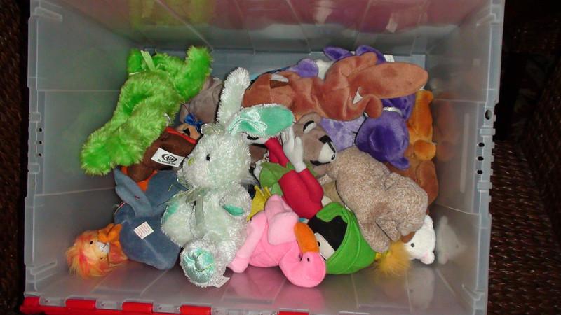 box of donated beanie babies