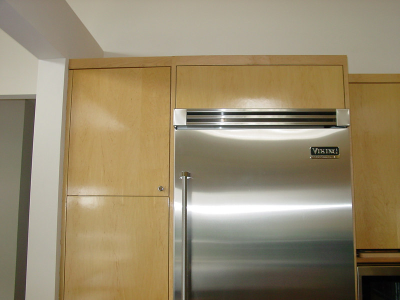 """Euro Style"" cabinets with Built in Refer"