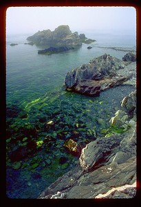 Rocky seashore just below Quoddy Head, Maine