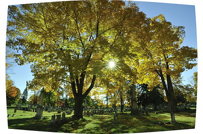 Evergreen Cemetery, Portland, Maine with barrel distortion of ultrawide lens