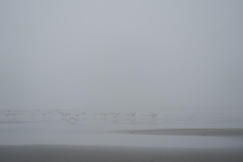 Ocean 125