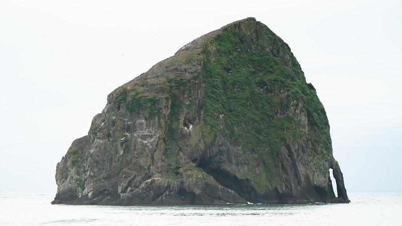 Ocean 110