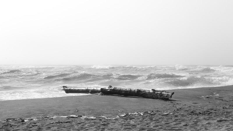 Ocean 23