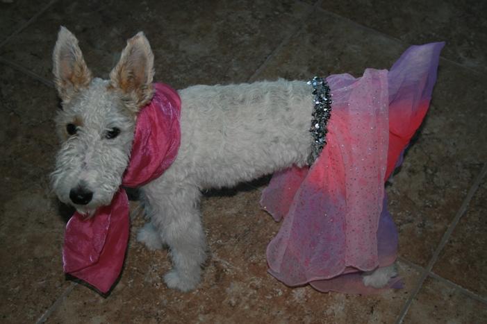 princess wee wee