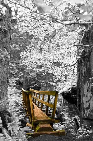 tht footbridge