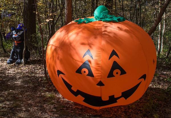 Halloween15-6092