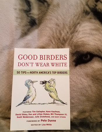 Good Birders Don't Wear White - Lisa White