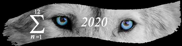 Intrigued Blog Summary 2020