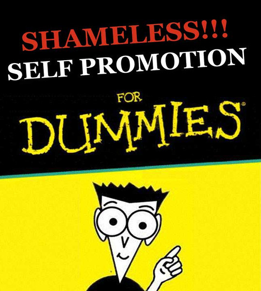dummies-shameless-self-prom