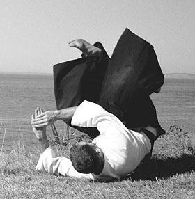 aikido_roll