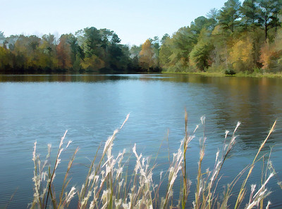 Shadow Lake, Thomaston, Alabama