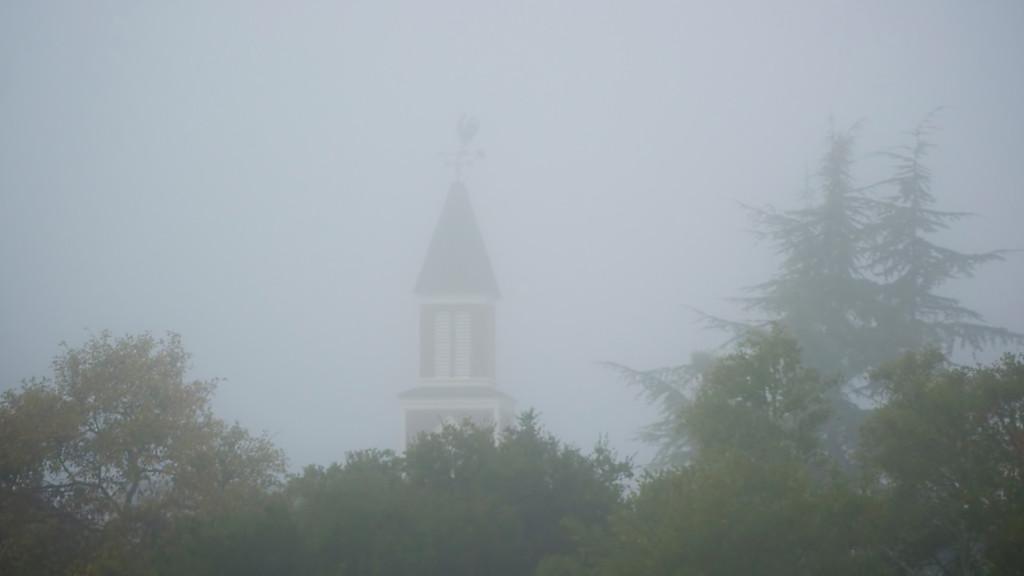 A foggy Sunday morning in Novato ref: c0aa97f7-6154-4099-a081-c9ae6305460f