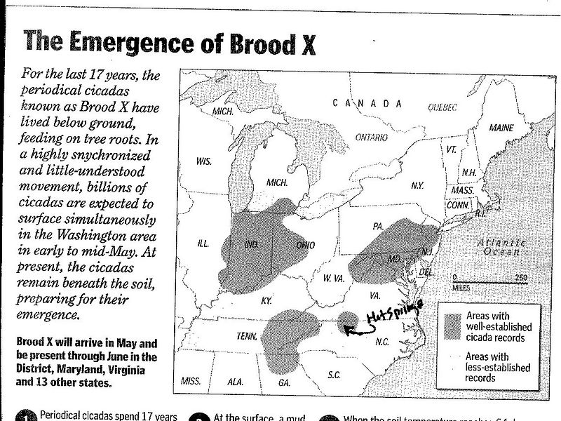 BroodXsm BW map