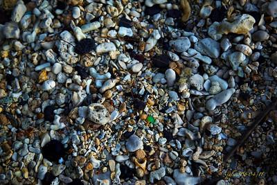 Beachdebris042711