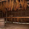 27 March 2010<br /> Historic St Mary's City Living Exhibit  - The Godiah Spray Tobacco Plantation<br /> Harvested tobacco plants are dried and cured in the barn.