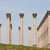 3 April 2010<br /> US National Arboretum<br /> Corinthian columns that were once at the US Capitol.